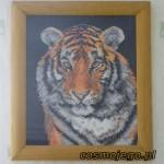 Obraz haftowany - tygrys
