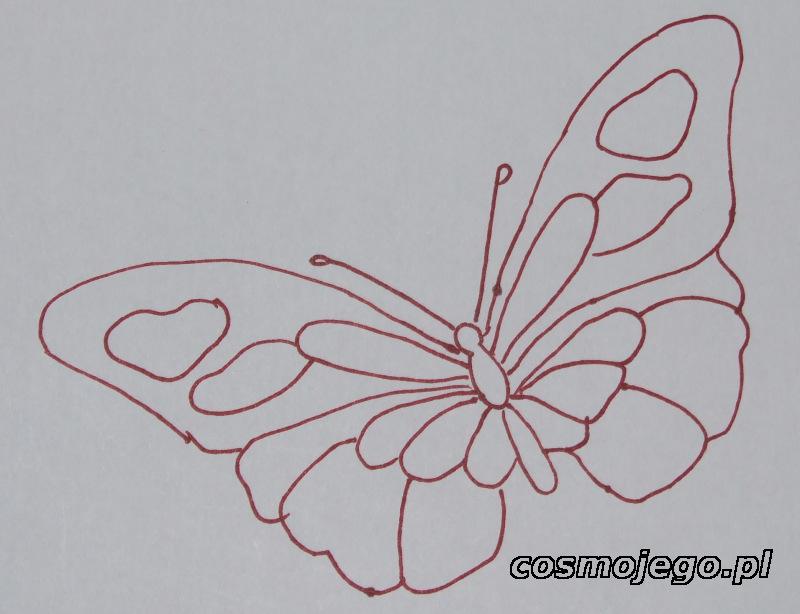 Szablon naszego motyla
